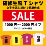 easy-kenshusei-sale